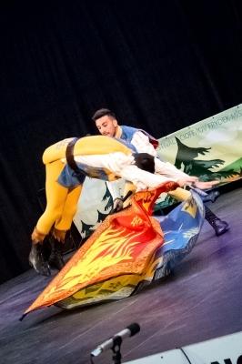 Mezinárodní folklórní festival 2017_12
